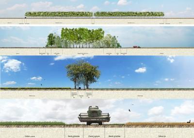 propositions des nouvelles figures de paysage en 2030 : agroforesterie 200m // haie 100m // alignement 20m // chemin agricole 18m